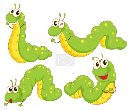 Four green caterpillars