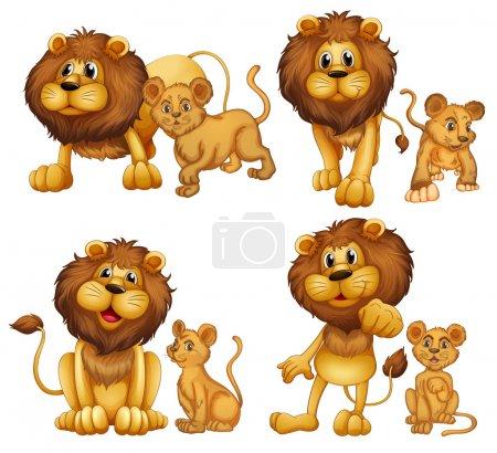 Illustration for Illustration of a set of lions - Royalty Free Image