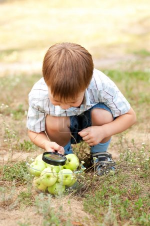 boy looking at apples with magnifying glass.