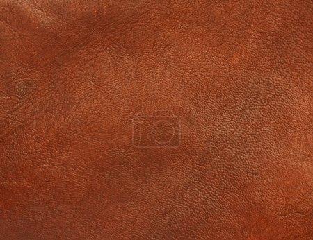 Photo pour En cuir véritable brillant et poli texture fond un matériau authentique fabriqués à partir de peaux d'animaux et utilisés dans des vêtements durables de qualité - image libre de droit