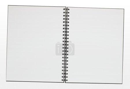 Blank ring binder pad border