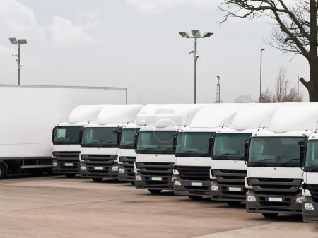 Fleet lorries