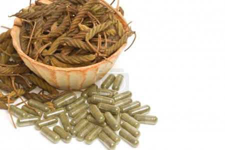 East Indian screw tree,dry herb and pills