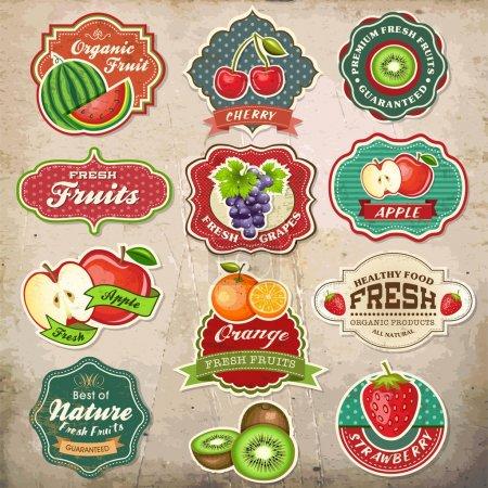 """Illustration pour Collection d """"éléments de design vintage rétro grunge fruits frais - image libre de droit"""
