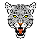 A Snow leopard head logo This is vector illustration ideal for a mascot and tattoo or T-shirt graphic