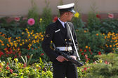 Indian Government Guard