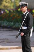 Guard at India Gate