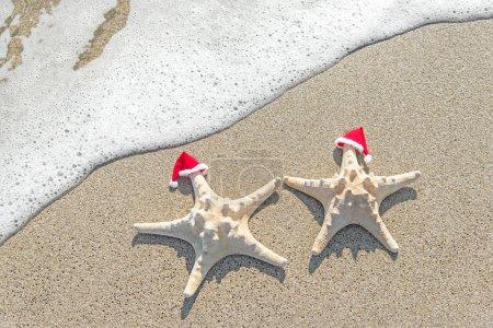 Sea-stars couple in santa hats on the sand.