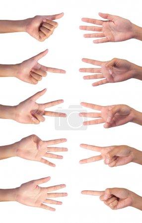Foto de Imagen de conteo de manos derechas de la mujer dedo número (1 a 10) aislada sobre fondo blanco - Imagen libre de derechos