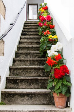 Staircase decorated with colorful flowers