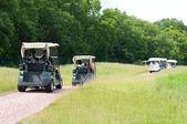 Elektrický golfový kočárek