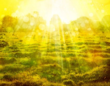 Eco nature with sun beam, green landscape background with sunshine