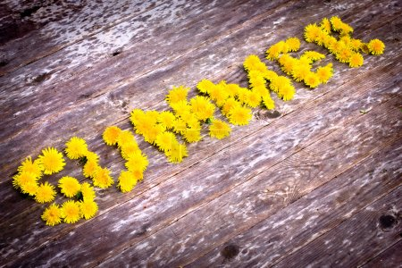 "Yellow dandelions forming word ""SUMMER"""