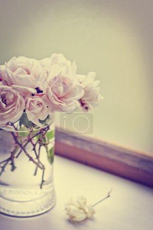 Pink roses in vase