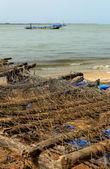 Fishers net-Carabane