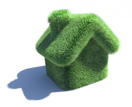 House covered with grass