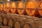 TRNAVA, SLOVAKIA - MARCH 3, 2014: Casks from indoor of modern wine cellar of great Slovak producer