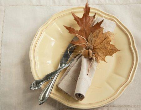 Photo pour Table d'automne - image libre de droit