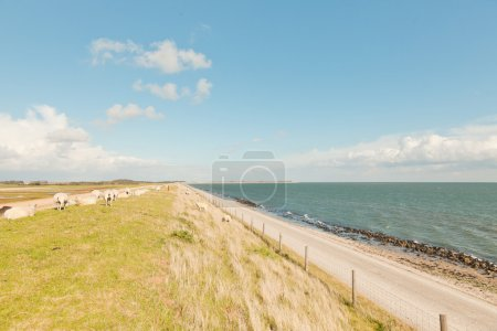 Dutch wide landscape with dike and blue cloudy sky.