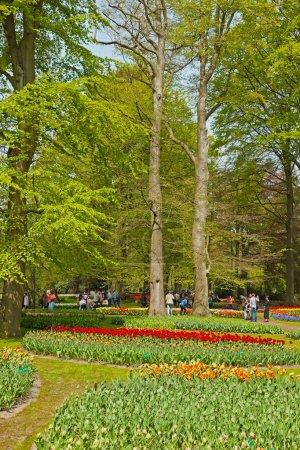 Photo pour Jardin fleuri au printemps avec les touristes. Keukenhof. Lisse . - image libre de droit
