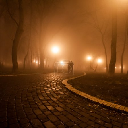 romantic and happiness scene of couples foggy evening in the park