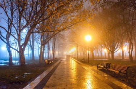 Photo pour Parc de la ville pendant la nuit - image libre de droit