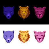 Big cat set-tiger cheetah panther