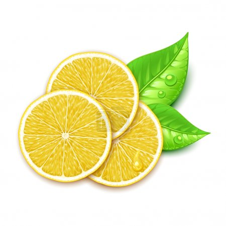 Illustration for Lemon slice - Royalty Free Image