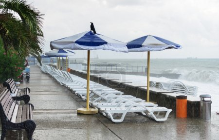 Photo for Empty quay with sun loungers in the storm - Royalty Free Image