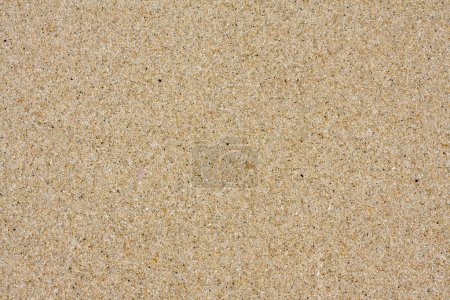 Photo for Sand Texture - Royalty Free Image