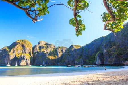 Photo pour Vue de la baie de Maya à Phi Phi Island asia Thaïlande - image libre de droit
