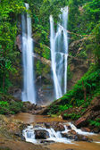 Wasserfall im wald