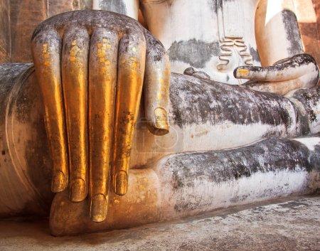Buddha old hand