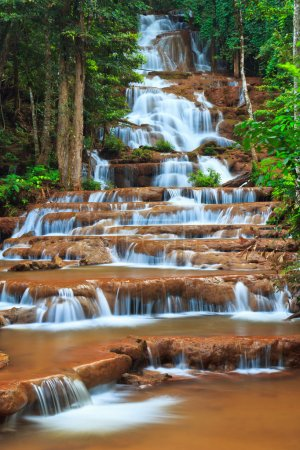 Photo for Waterfall in the forest - Royalty Free Image