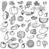 Set of vegetables and fruits For menu Hand drawing retro Healthy food Vintage style