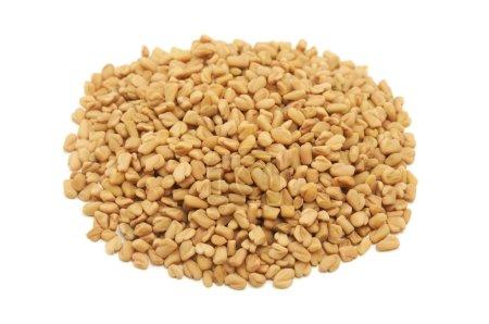 Dried fenugreek seeds on a white background...