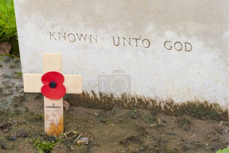 Poppies on Tyne cot cemetery first world war flanders Belgium