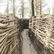 Bayernwald wooden trench of world war 1...