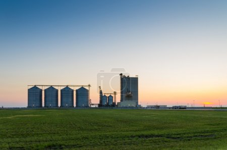 Photo for Farm grain silos for agriculture after sunset - Royalty Free Image
