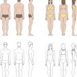 Men's and women's figures