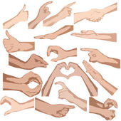 Set of vector hands isolated