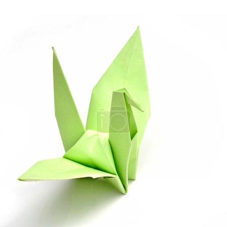 Photo pour Papier vert oiseau isolé sur fond blanc - image libre de droit