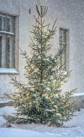 Christmas tree outside in snowy garden