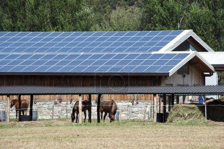 Foto de Una granja moderna con paneles solares en el techo - Imagen libre de derechos