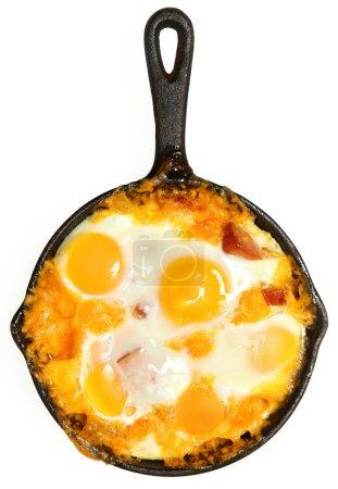 Photo pour Cuit au four frais oeufs saucisse et cheddar fromage sur blanc - image libre de droit