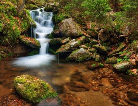 Photo pour Ruisseau printanier coulant dans le chenal avec mousse - image libre de droit