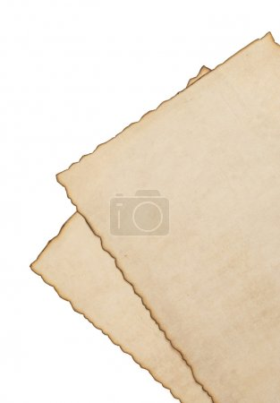 paper vintage parchment isolated on white