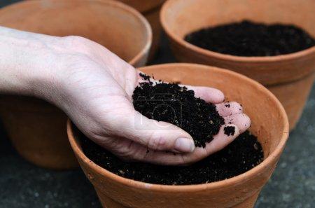 Planting new plants