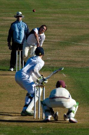 Photo pour Wellington - 23 fév: jouer au cricket sur 23 février 2013 à wellington, nz.cricket est un sport d'été national populaire et de la Nouvelle-Zélande est l'un des 10 pays qui participent au test-match cricket. - image libre de droit