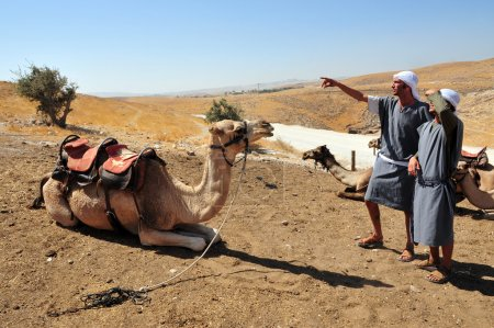 Camel Ride and Desert Activities in the Judean Desert Israel